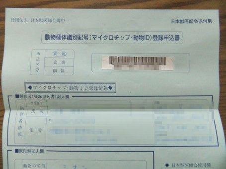20110519_6.jpg