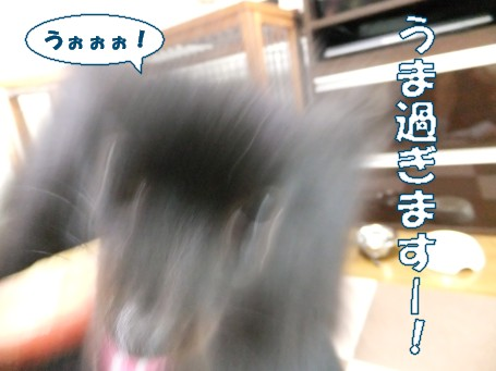 20110527_6.jpg