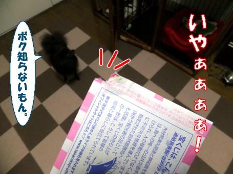 20110530_6.jpg