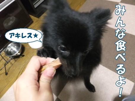 20110601_3.jpg