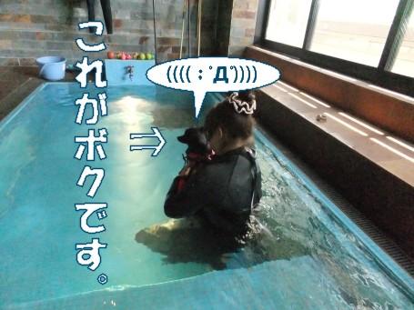 20110604_2.jpg
