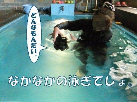20110604_3.jpg