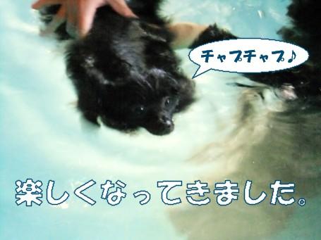 20110604_4.jpg