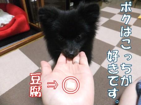 20110619_6.jpg