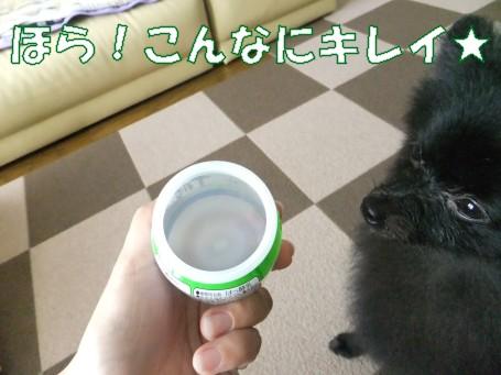20110707_6.jpg