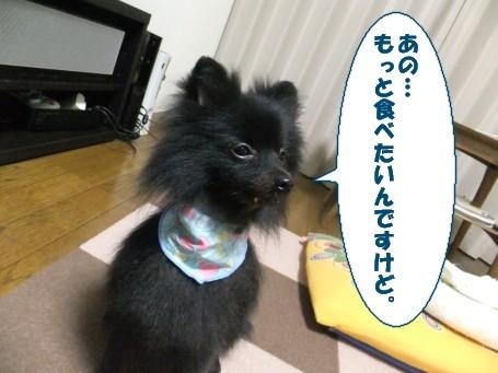 20110710_5.jpg