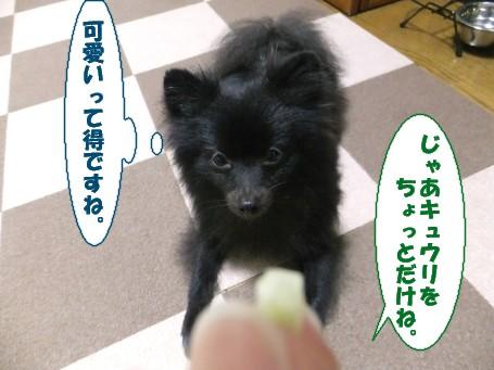 20110712_4.jpg