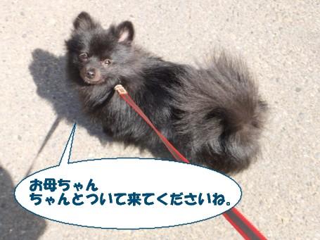 20110714_3.jpg