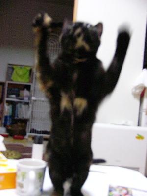 ジャンプ!3