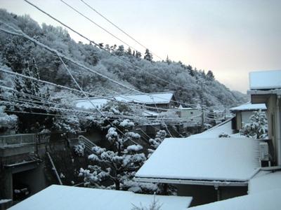 3.12朝 雪①JPG