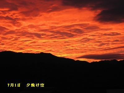 五月が丘 夜景JPG