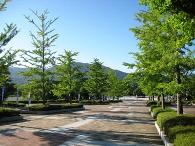 夏 公園④JPG
