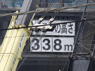 2332.jpg