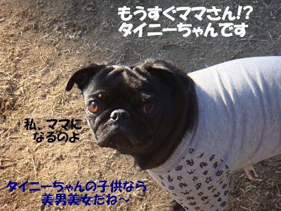 DSC05999 - コピー