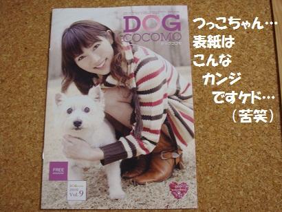 DSC02346 - コピー