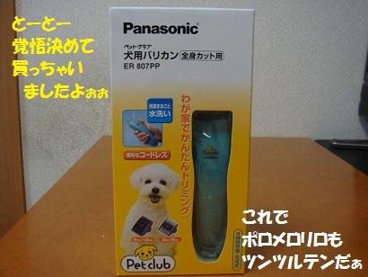DSC02617 - コピー