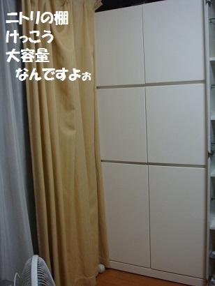 DSC03161 - コピー