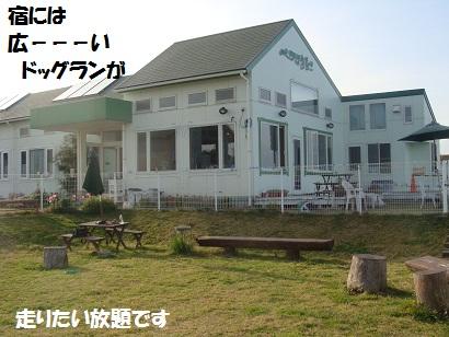 DSC00365 - コピー