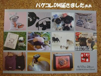 DSC04980 - コピー