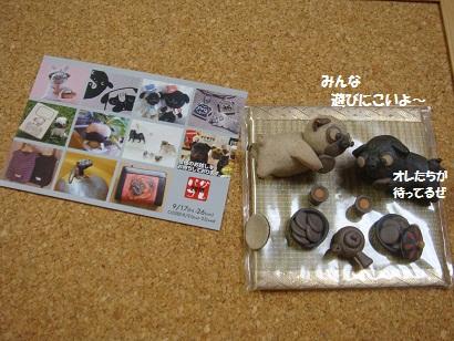 DSC04979 - コピー