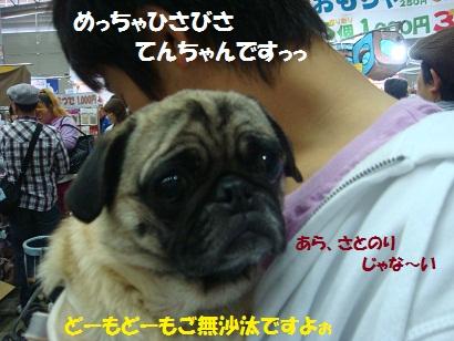 DSC01122 - コピー