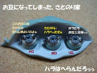 DSC07572 - コピー