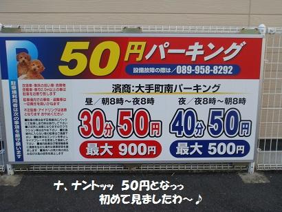 DSC05541 - コピー