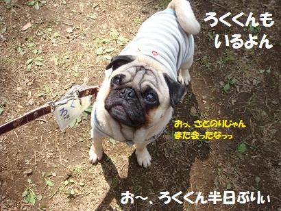 DSC01987.jpg