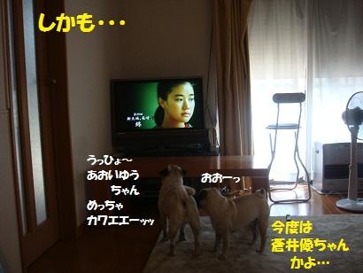 DSC03288.jpg