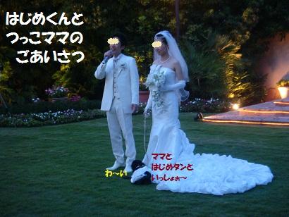 DSC03521.jpg