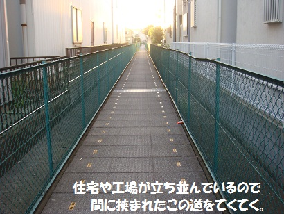 DSC04168.jpg