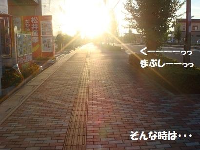 DSC04174.jpg