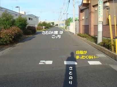 DSC04217.jpg