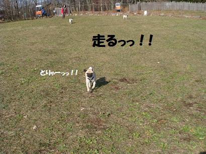 DSC05785.jpg