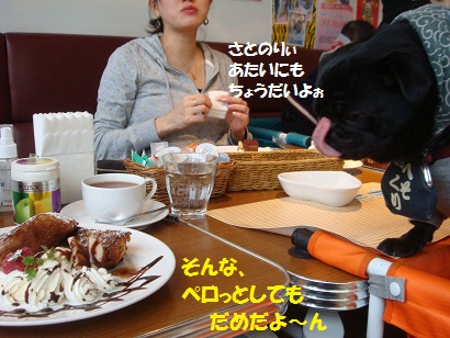 DSC06479.jpg