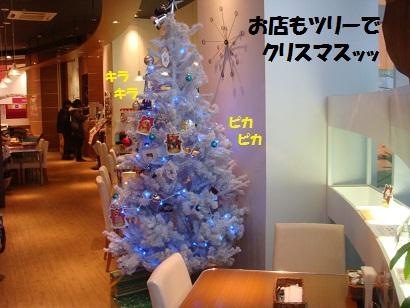 DSC06492.jpg
