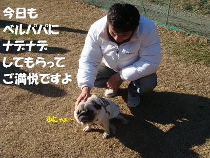 DSC06647.jpg