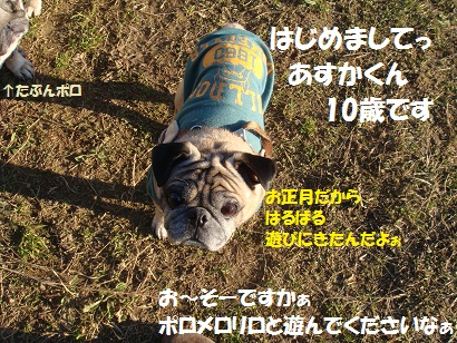 DSC06742.jpg