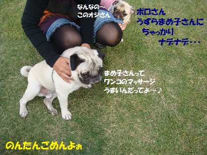 DSC07139.jpg
