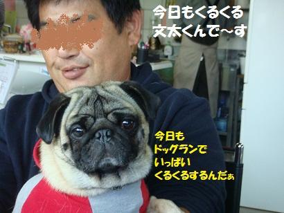 DSC07342_20110131234526.jpg