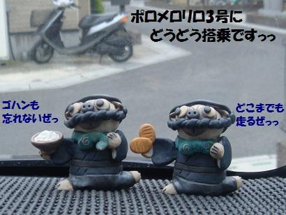 DSC08026.jpg