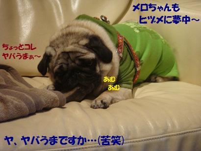 DSC08658_20110131221953.jpg