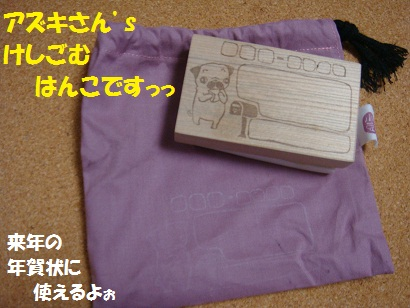 DSC08736.jpg