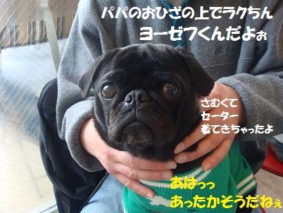 DSC08783.jpg