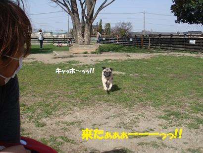 DSC09739.jpg