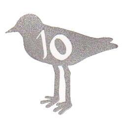 ハジロコチドリ10