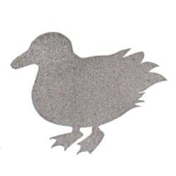 鳥・マガモ