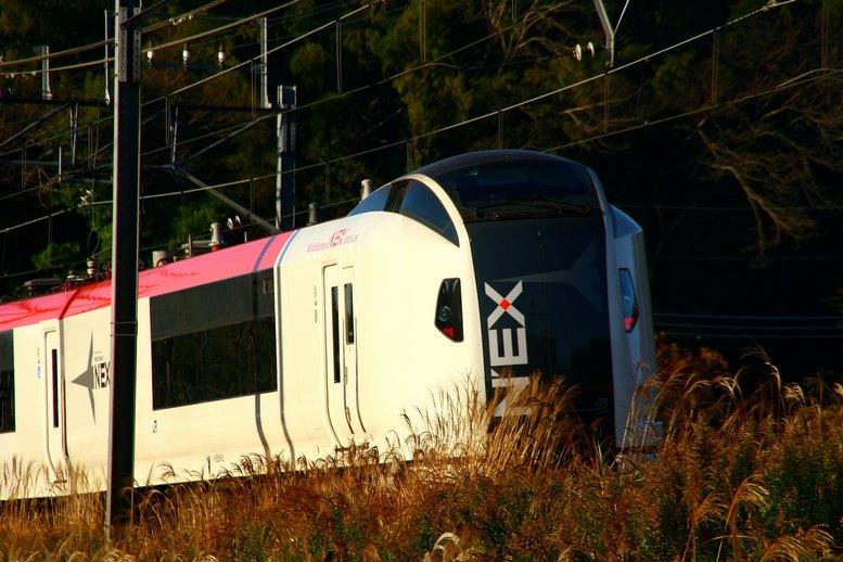 2010120507.jpg