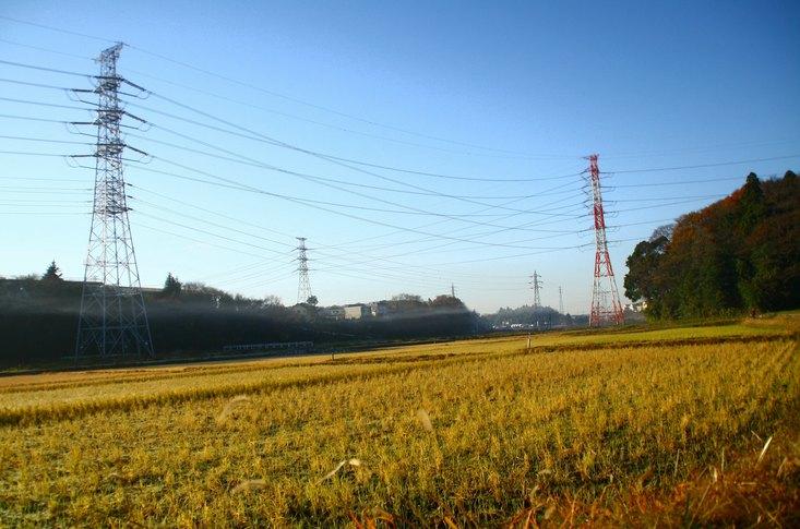 2010120508.jpg
