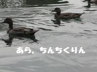 038_convert_20101022184510.jpg